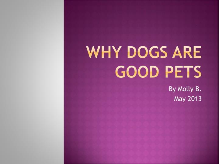 why dogs are good pets n.