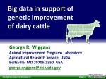 Big data in support of genetic improvement of dairy cattle