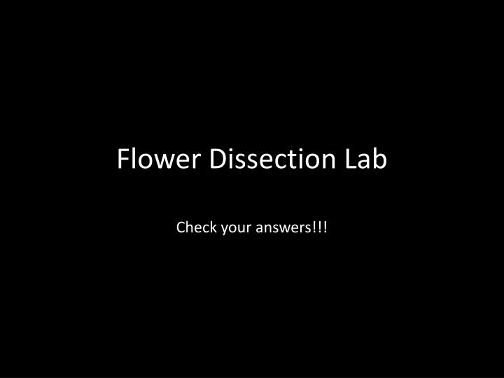 flower dissection lab n.