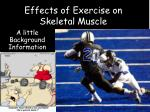 Effects of Exercise on Skeletal Muscle