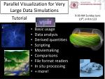Parallel Visualization for Very Large Data Simulations