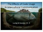 The Effects of Code Usage in Intercultural Communication