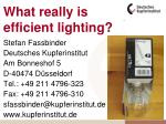 What really is efficient lighting?