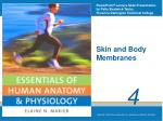 Skin and Body Membranes