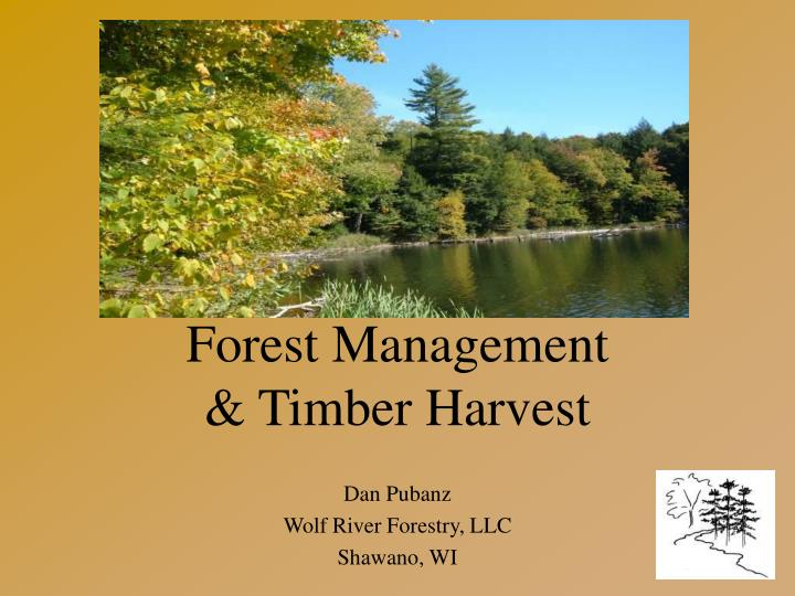 forest management timber harvest n.
