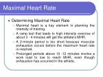 Maximal Heart Rate