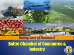 Belize Chamber of Commerce & Industry