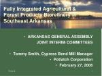 Fully Integrated Agricultural & Forest Products Biorefinery in Southeast Arkansas