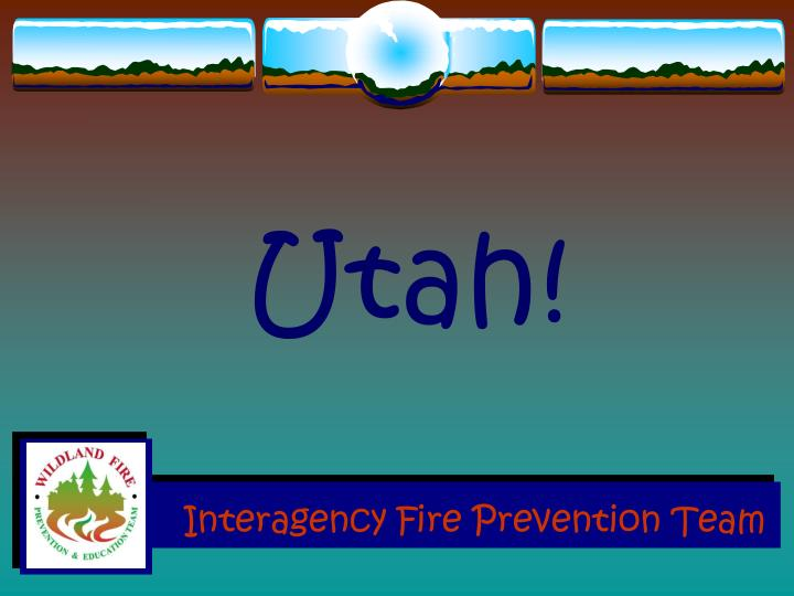 interagency fire prevention team n.