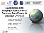 caBIG IVIWS SIG: Imaging Vocabularies & Common Data Elements Breakout Overview