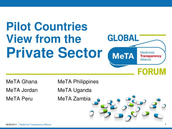 pilot countries view from the private sector n.