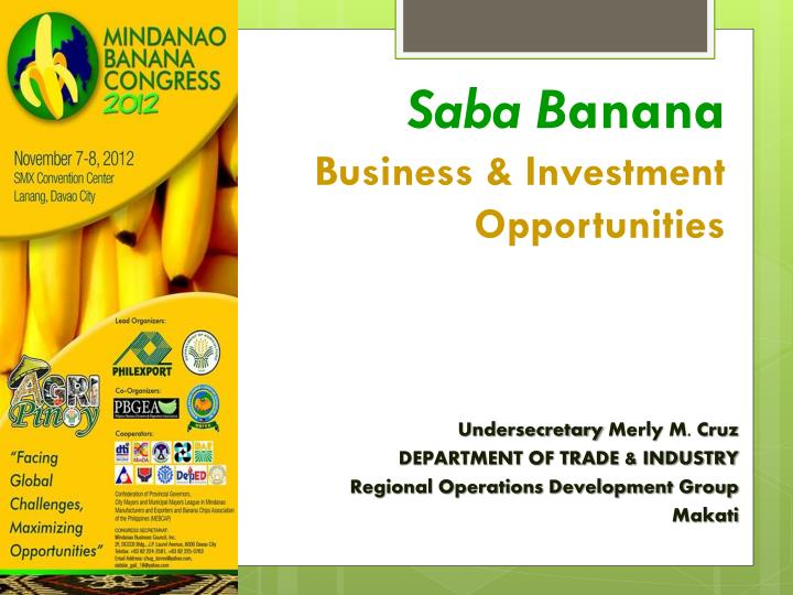 saba b anana business investment opportunities n.