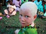 Albinism in Paradise