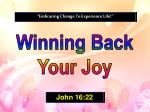 Winning Back Your Joy