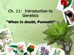 Ch. 11:  Introduction to Genetics