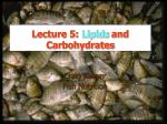 Lecture 5: Lipids and Carbohydrates