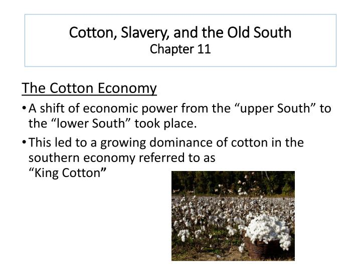 cotton slavery and the old south chapter 11 n.