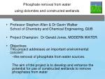 Phosphate removal from water using dolomites and constructed wetlands