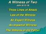 A Witness of Two John 8:12-18