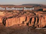 The Southwest Desert