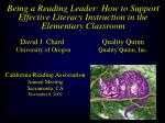 Being a Reading Leader: How to Support Effective Literacy Instruction in the Elementary Classroom