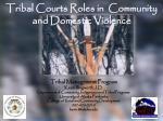 Tribal Courts Roles in  Community and Domestic Violence