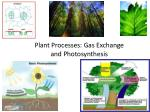 Plant Processes: Gas Exchange  and Photosynthesis