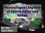Psychological Aspects of Sports Injury and Rehab