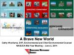 A Brave New World Cathy  Woollums , SVP, Environmental and Chief Environmental Counsel