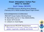 Ocean-Atmosphere Carbon Flux: What to Consider