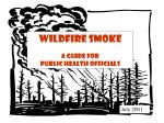Wildfire Smoke A Guide for  Public Health Officials