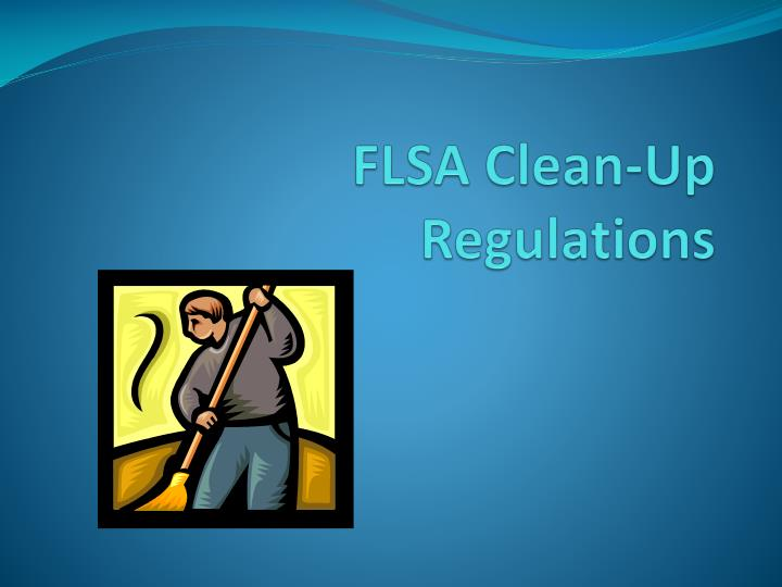 flsa clean up regulations n.