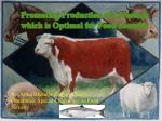 Promoting Production of Livestock which is Optimal for Food Security