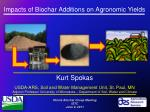 Impacts of Biochar Additions on Agronomic Yields