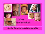 Culture and the Individual