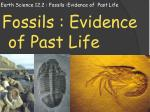 Earth Science 12.2 : Fossils :Evidence of  Past Life