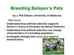 Breeding Belayev's Pets