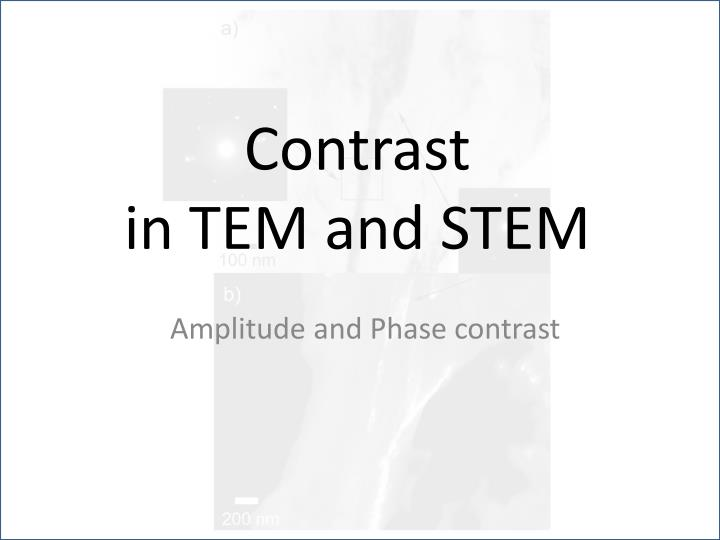 contrast in tem and stem n.