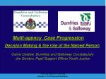 Multi-agency  Case Progression Decision Making & the role of the Named Person