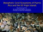 Mesophotic Coral Ecosystems of Puerto Rico and the US Virgin Islands