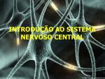INTRODUÇÃO AO SISTEMA NERVOSO CENTRAL