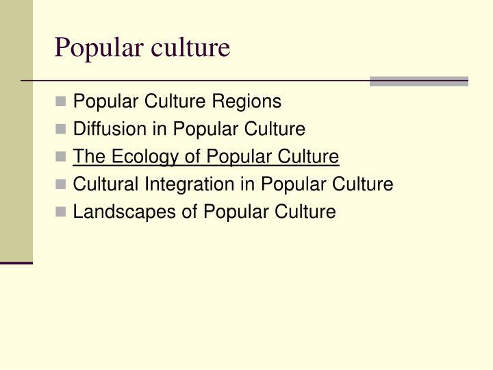 popular culture n.