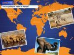 You're going on safari in Kenya!