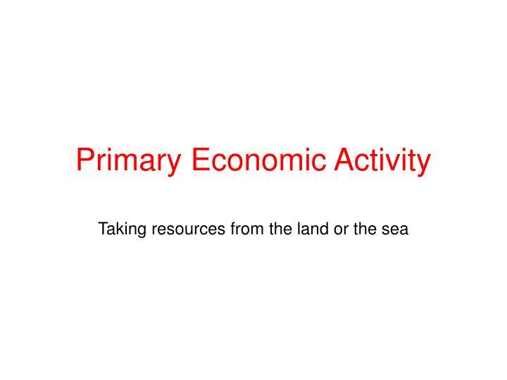 primary economic activity n.