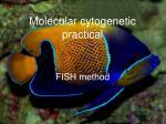Molecular cytogenetic practical