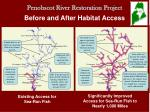 Penobscot River Restoration Project Before and After Habitat Access