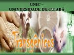 UNIC – UNIVERSIDADE DE CUIABÁ