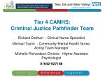 Tier 4 CAMHS: Criminal Justice Pathfinder Team
