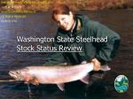 Washington State Steelhead Stock Status Review