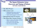 The Square Kilometer Array: Discovery and Timing of Pulsars Jim Cordes, Cornell University